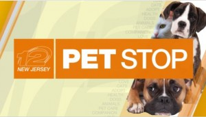 AIR Dogs on AIR @ The PET STOP NJ News 12